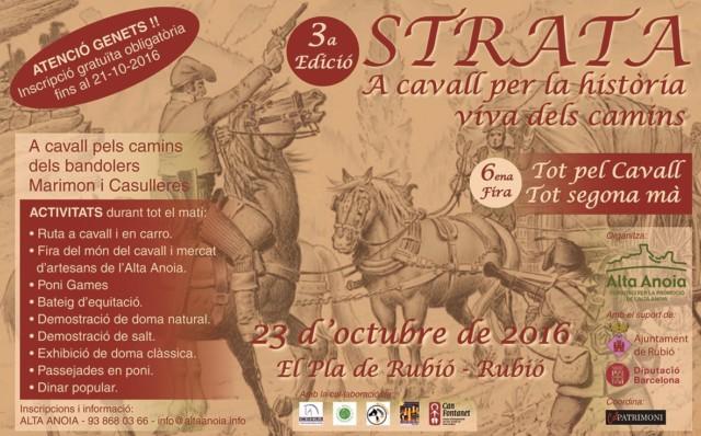 Poster STRATA 2016 - 2n