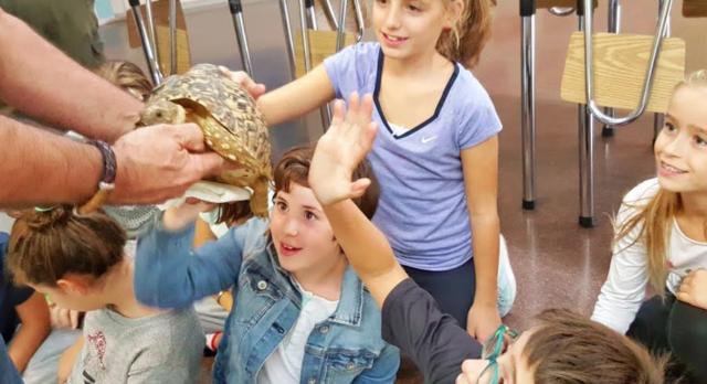 reptils-maristes-veuanoia