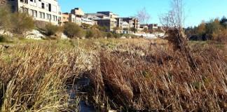 riu anoia - La Veu de l'Anoia - VeuAnoia.cat