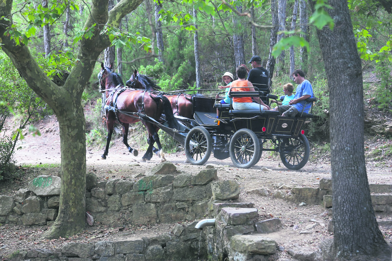 La Llacuna Passeig amb carro0012 int